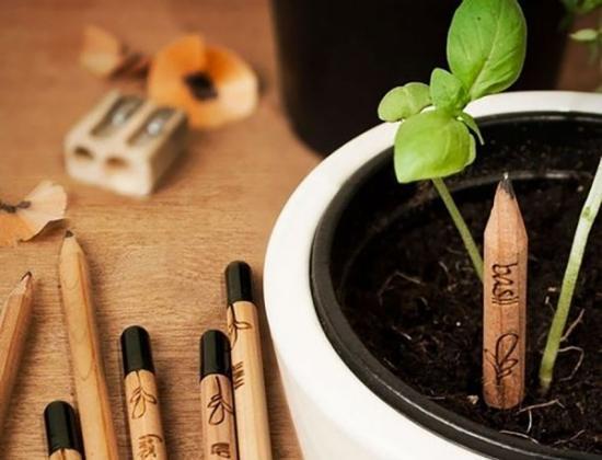 Da una matita nasce una pianta, al Mappamondo di Mantova